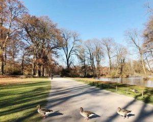 慕尼黑必玩-Englischer Garten 英國花園
