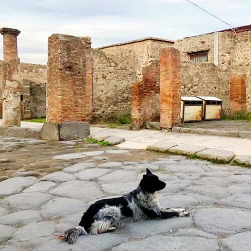 義大利龐貝 = 蓬佩伊 Pompeii 必玩 - 龐貝古城